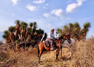 Discover Oaxaca's exotic nature on horseback.
